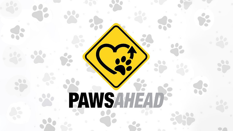 Yellow road sign with a heart,arrow, and dog print. Underneath says PawsAhead